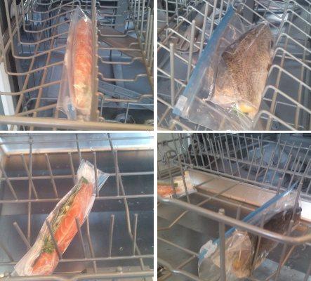 Dishwater Salmon